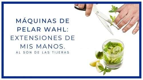 Máquinas de pelar Wahl: extensiones de mis manos.